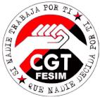 FESIM CGT-METAL